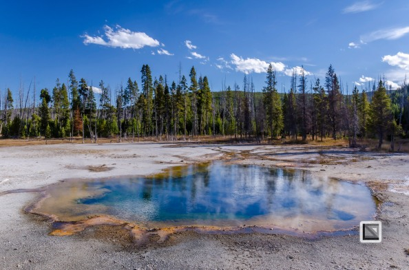 USA - Wyoming - Yellowstone National Park-107