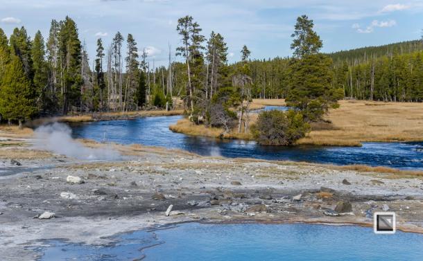 USA - Wyoming - Yellowstone National Park-109