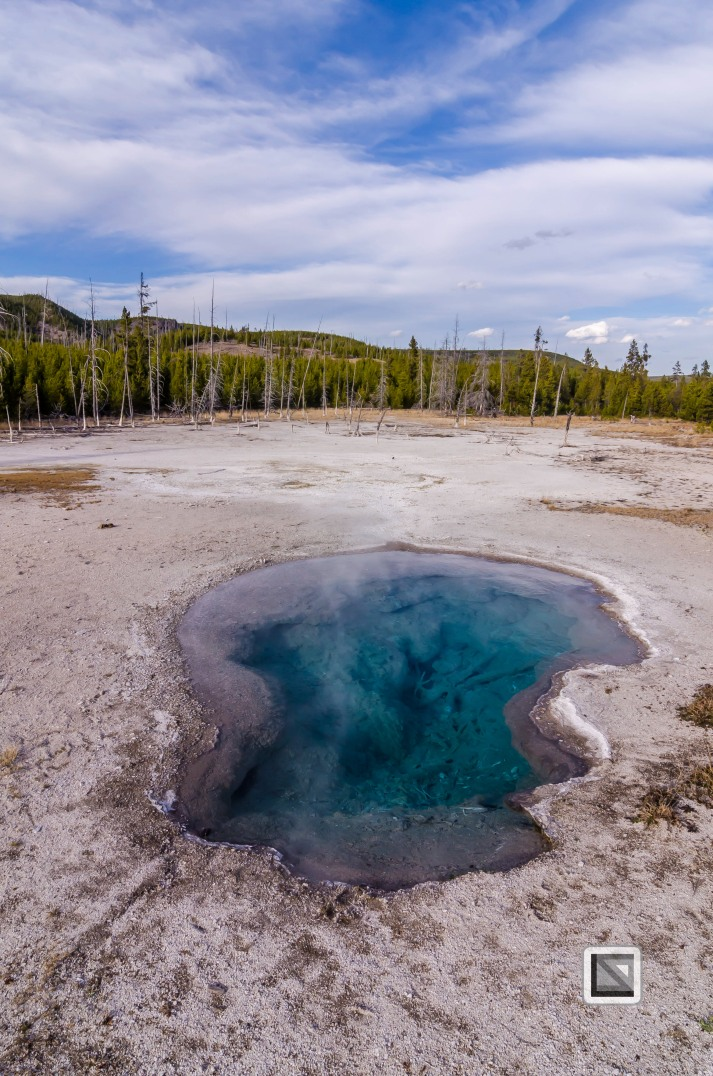 USA - Wyoming - Yellowstone National Park-114