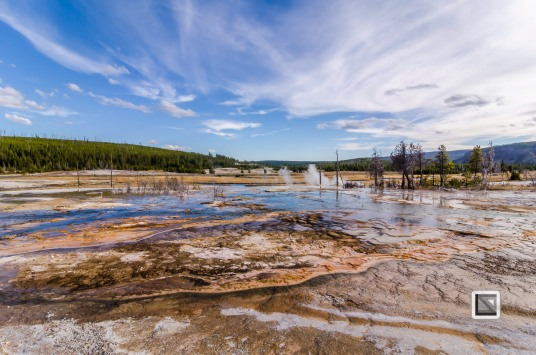 USA - Wyoming - Yellowstone National Park-115