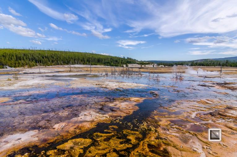 USA - Wyoming - Yellowstone National Park-116