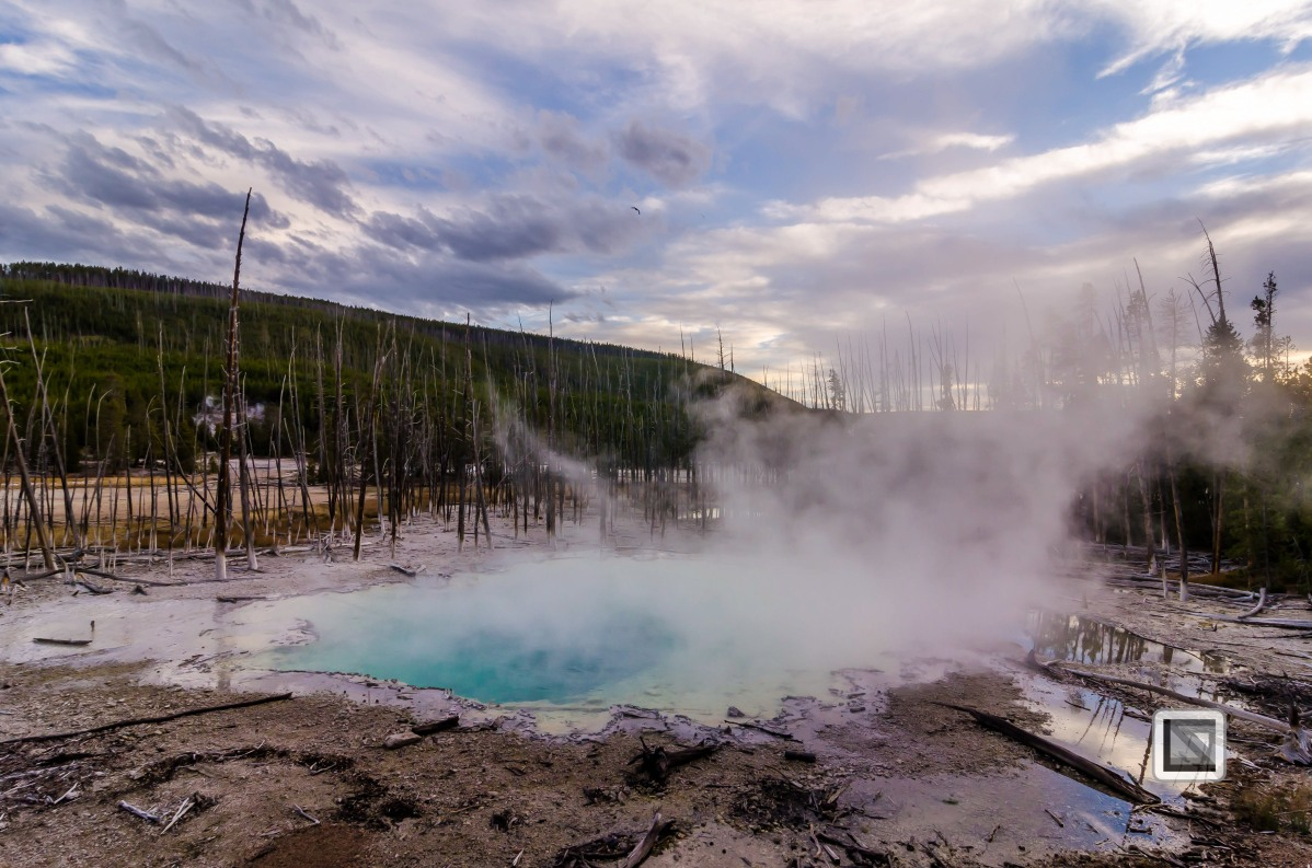 USA - Wyoming - Yellowstone National Park-117