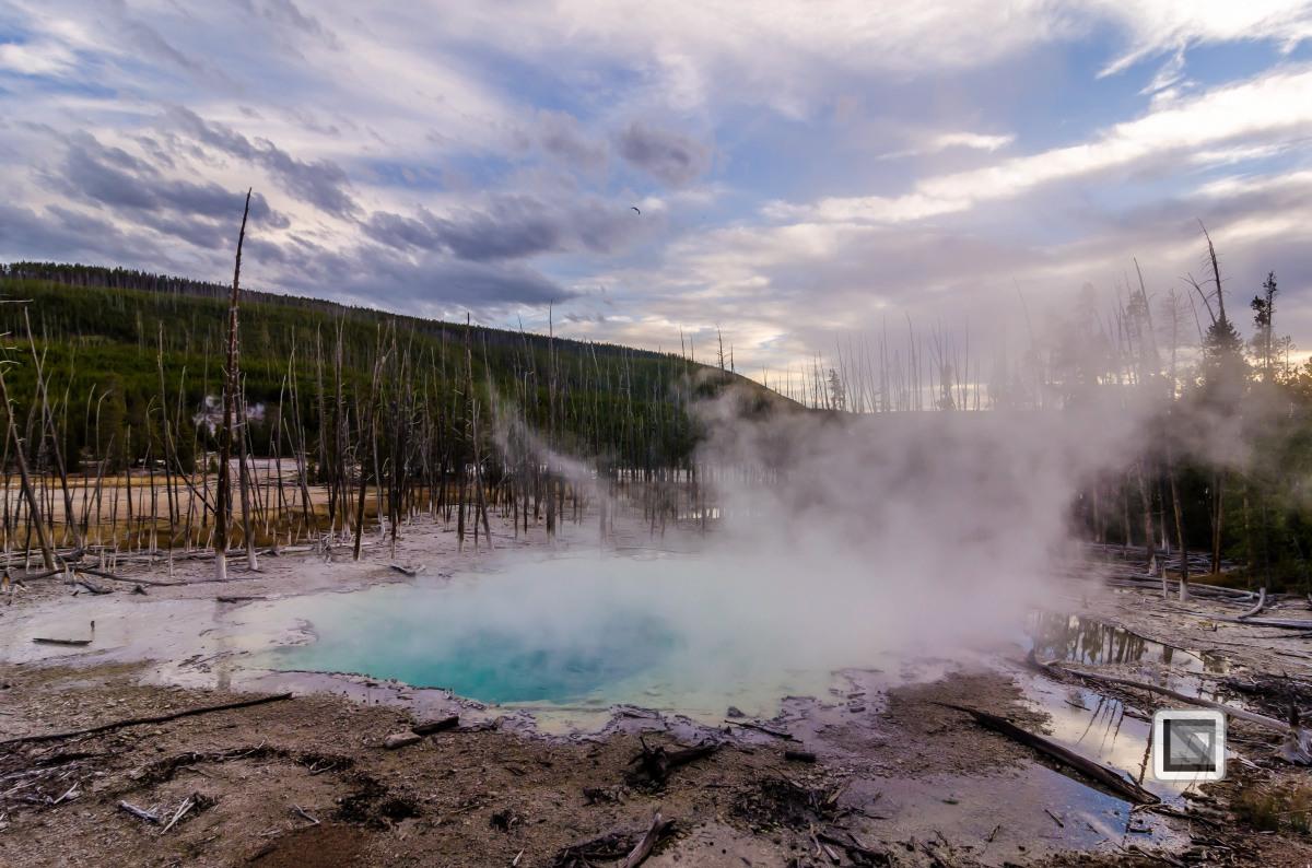 USA - Wyoming - Yellowstone National Park-117