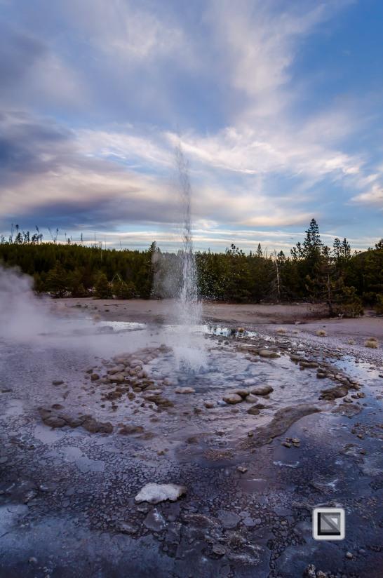 USA - Wyoming - Yellowstone National Park-119