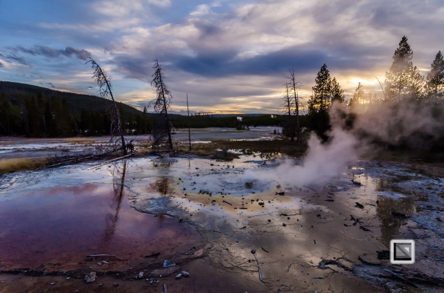 USA - Wyoming - Yellowstone National Park-120