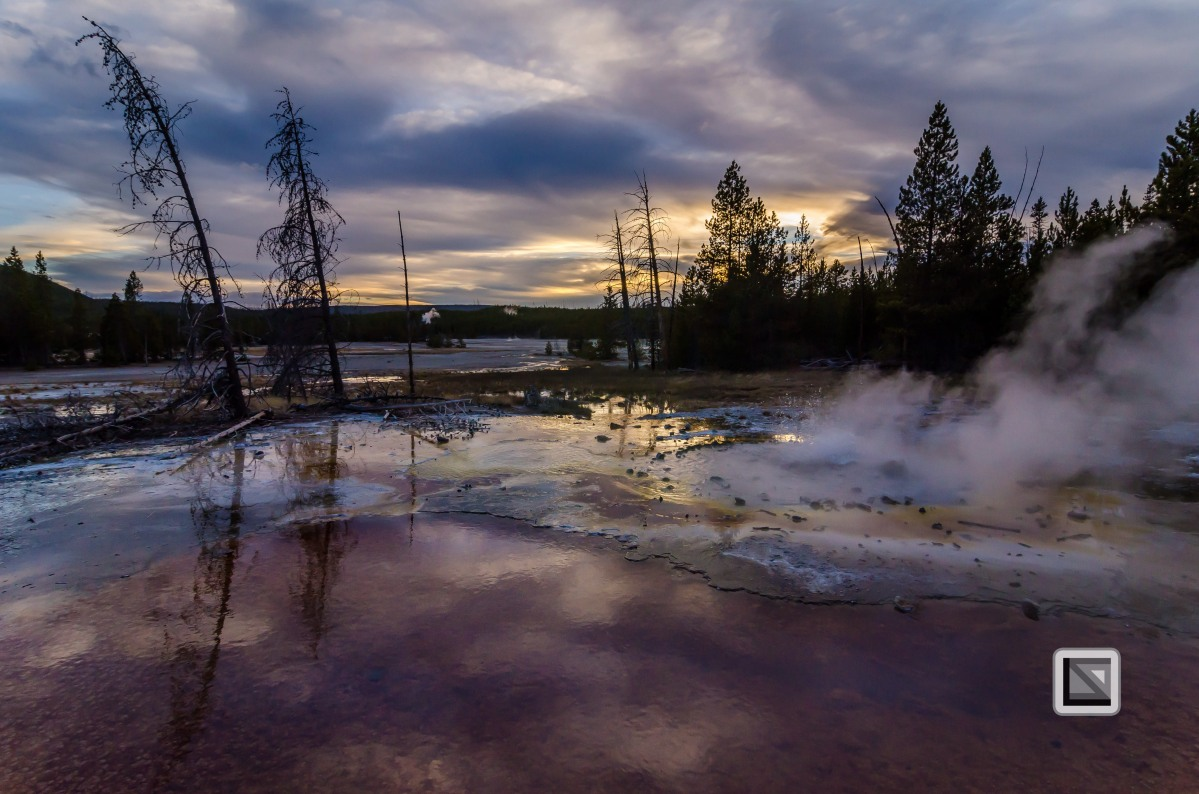 USA - Wyoming - Yellowstone National Park-121