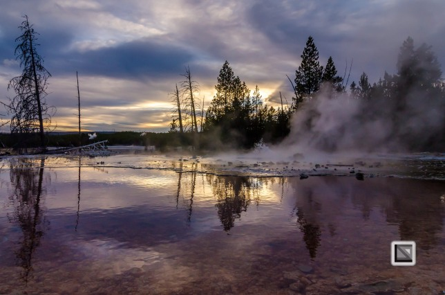 USA - Wyoming - Yellowstone National Park-122