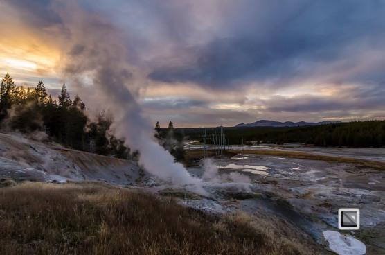 USA - Wyoming - Yellowstone National Park-123