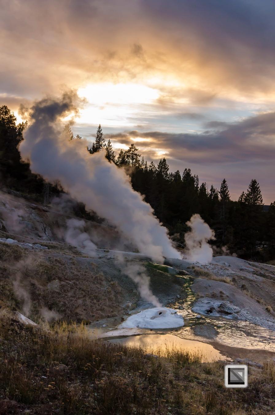 USA - Wyoming - Yellowstone National Park-124