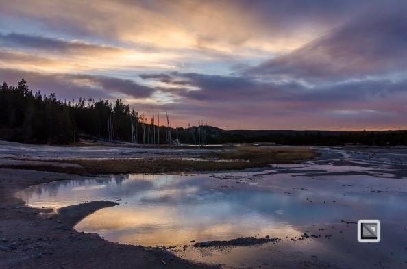 USA - Wyoming - Yellowstone National Park-126