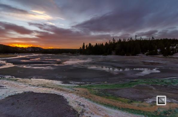 USA - Wyoming - Yellowstone National Park-128