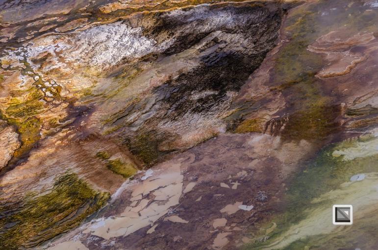 USA - Wyoming - Yellowstone National Park-13