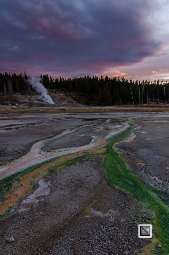 USA - Wyoming - Yellowstone National Park-132