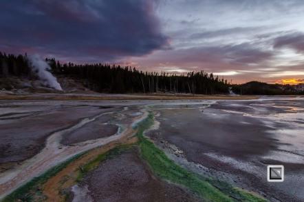 USA - Wyoming - Yellowstone National Park-133