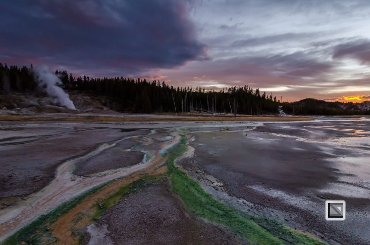 USA - Wyoming - Yellowstone National Park-133