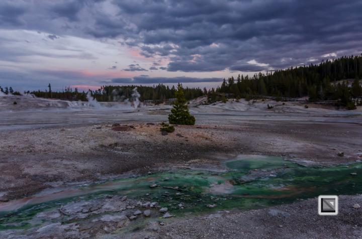 USA - Wyoming - Yellowstone National Park-135