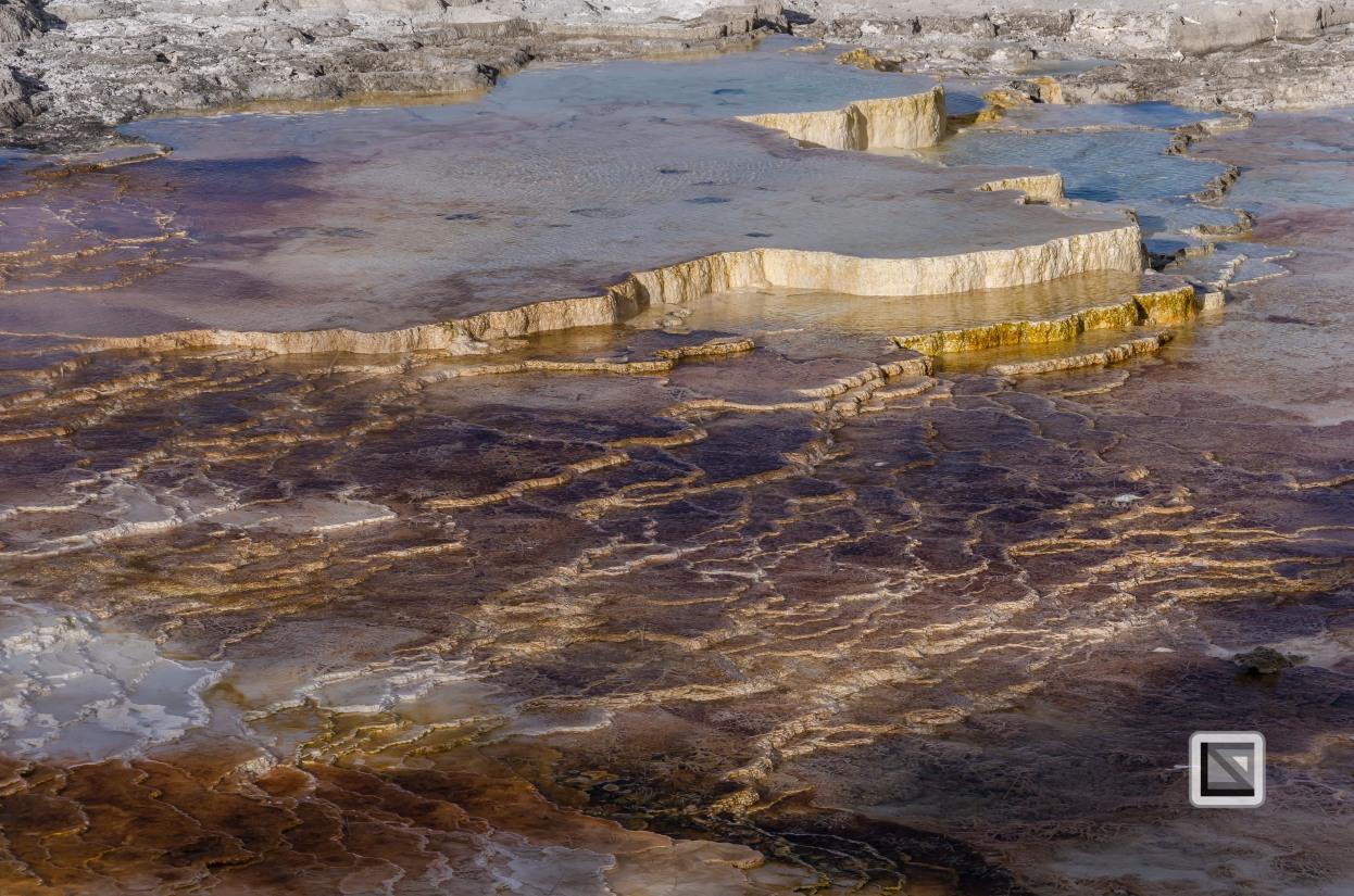 USA - Wyoming - Yellowstone National Park-17