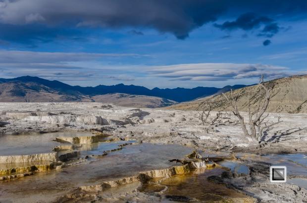 USA - Wyoming - Yellowstone National Park-20