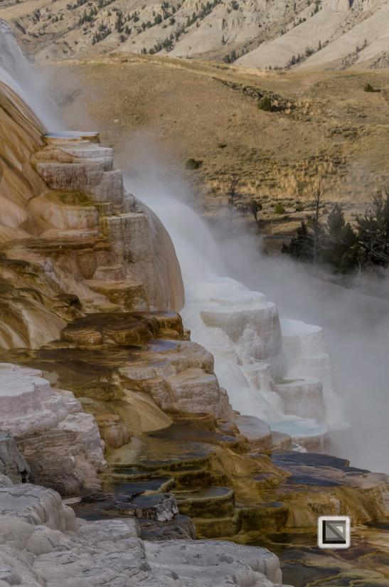 USA - Wyoming - Yellowstone National Park-24