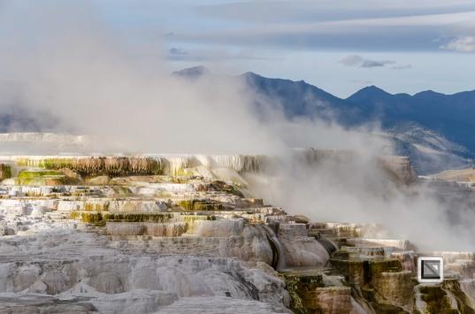 USA - Wyoming - Yellowstone National Park-27