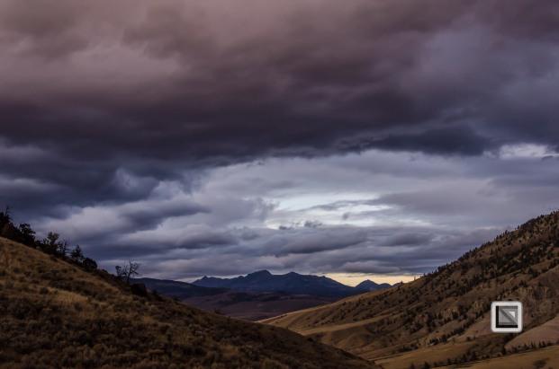 USA - Wyoming - Yellowstone National Park-29