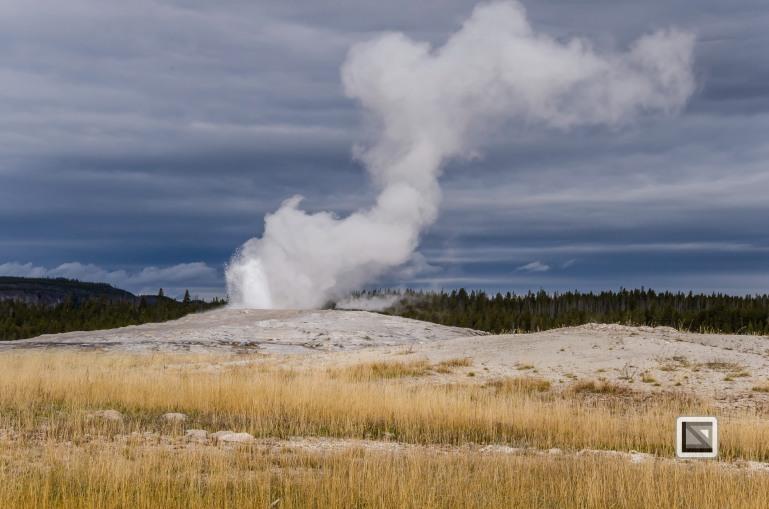 USA - Wyoming - Yellowstone National Park-31