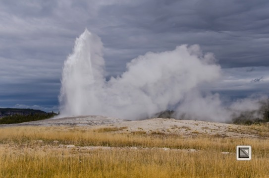 USA - Wyoming - Yellowstone National Park-32