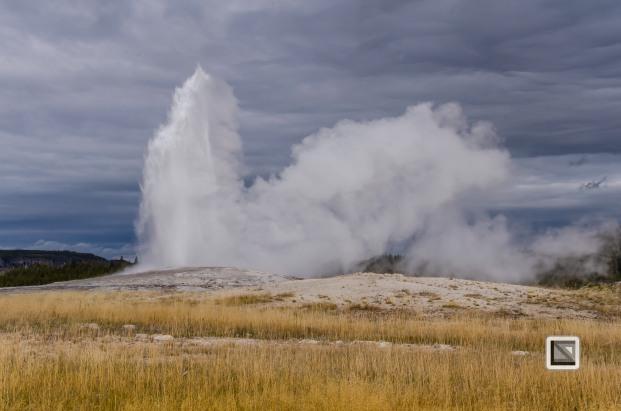USA - Wyoming - Yellowstone National Park-32