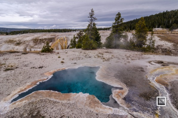 USA - Wyoming - Yellowstone National Park-35