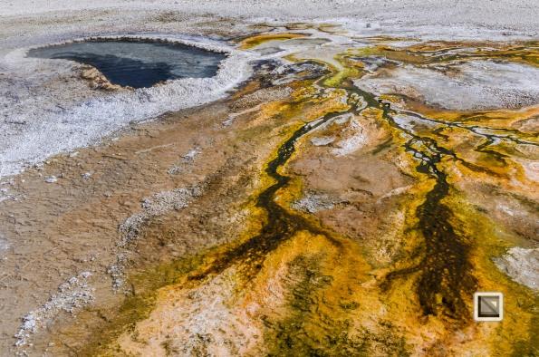 USA - Wyoming - Yellowstone National Park-43
