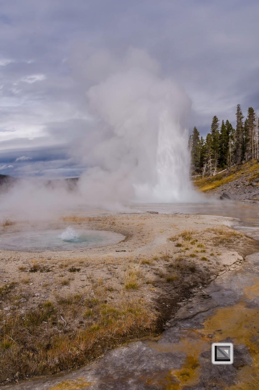 USA - Wyoming - Yellowstone National Park-46