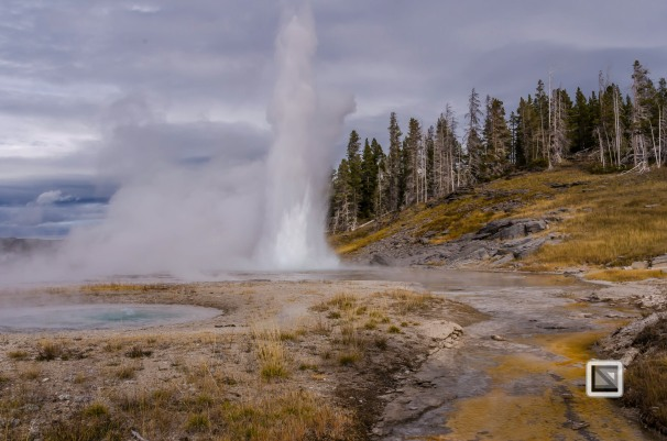 USA - Wyoming - Yellowstone National Park-47