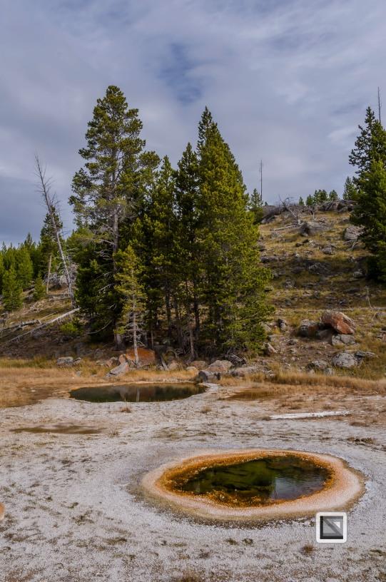 USA - Wyoming - Yellowstone National Park-48