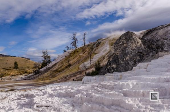 USA - Wyoming - Yellowstone National Park-5