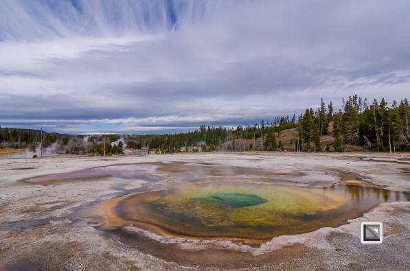 USA - Wyoming - Yellowstone National Park-51