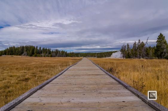 USA - Wyoming - Yellowstone National Park-52