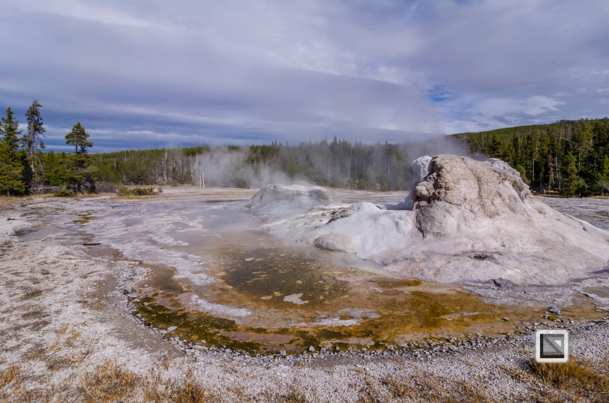 USA - Wyoming - Yellowstone National Park-53