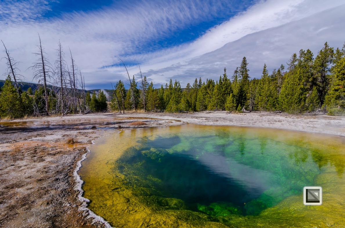 USA - Wyoming - Yellowstone National Park-57
