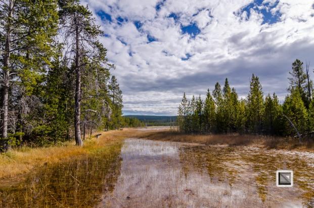 USA - Wyoming - Yellowstone National Park-60