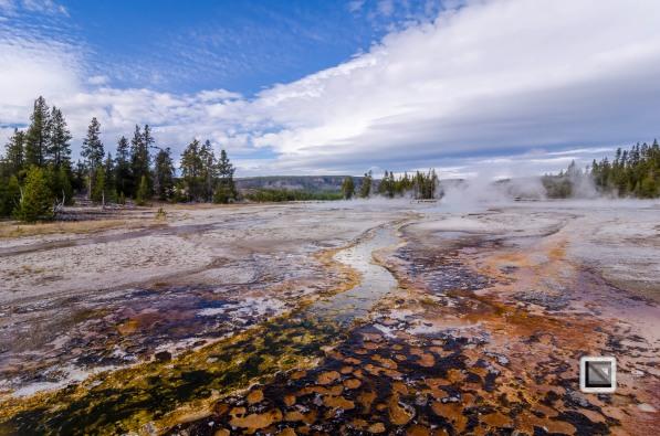 USA - Wyoming - Yellowstone National Park-61