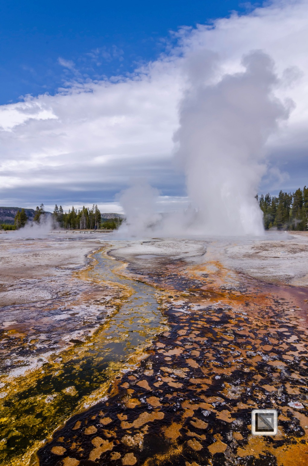 USA - Wyoming - Yellowstone National Park-62