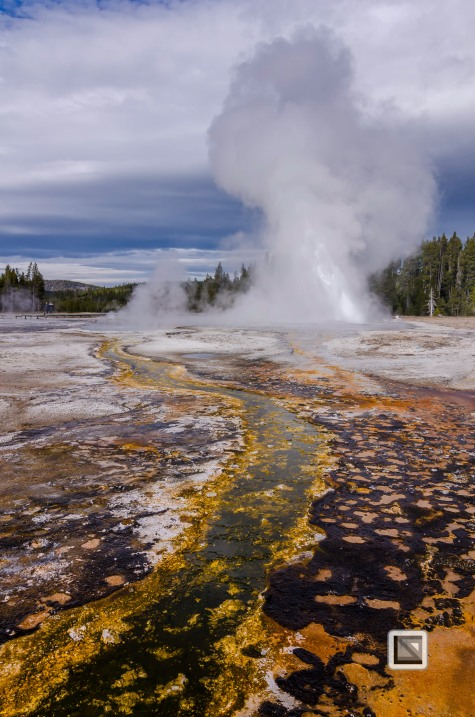 USA - Wyoming - Yellowstone National Park-63