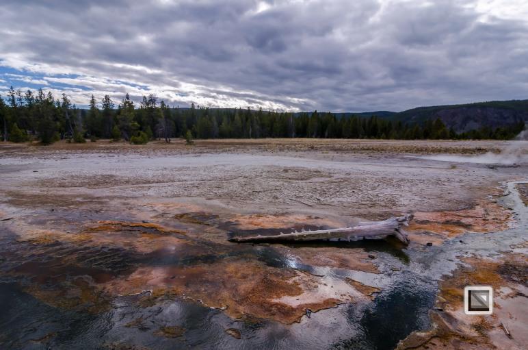 USA - Wyoming - Yellowstone National Park-65