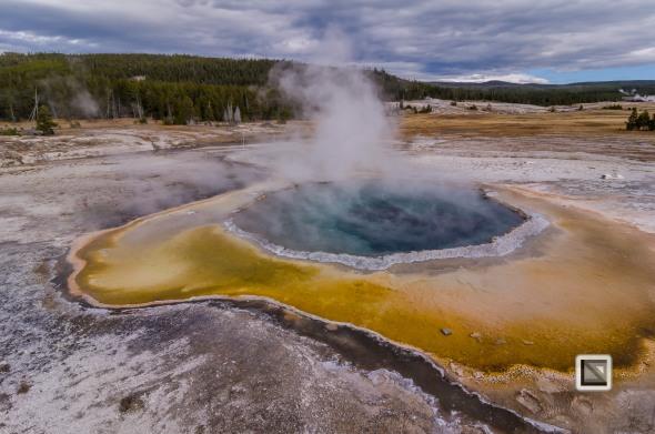 USA - Wyoming - Yellowstone National Park-67