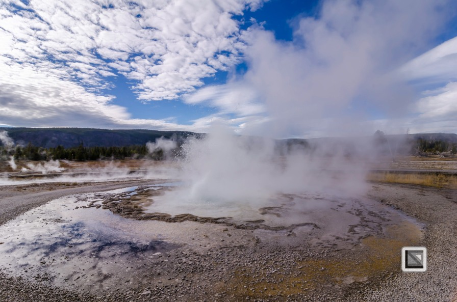 USA - Wyoming - Yellowstone National Park-69