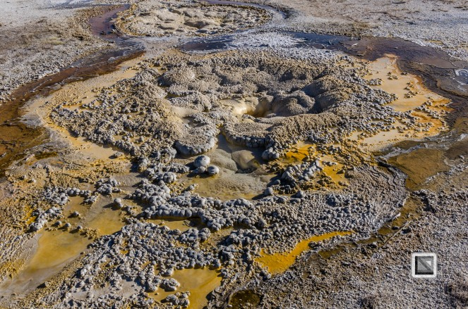 USA - Wyoming - Yellowstone National Park-73