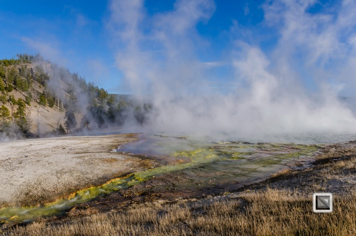 USA - Wyoming - Yellowstone National Park-76