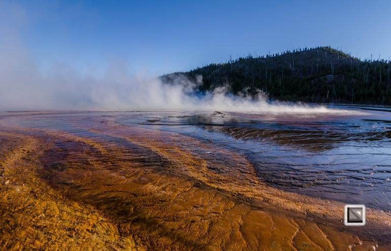 USA - Wyoming - Yellowstone National Park-83