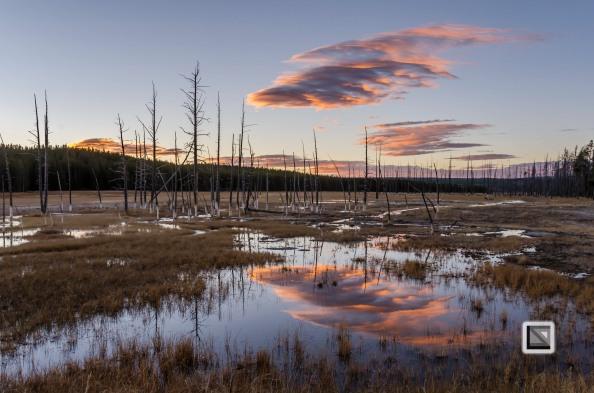 USA - Wyoming - Yellowstone National Park-92