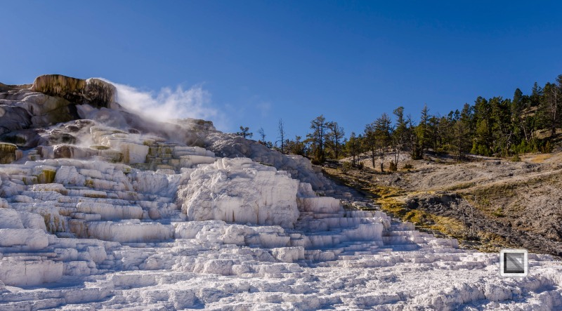 USA - Wyoming - Yellowstone National Park-94